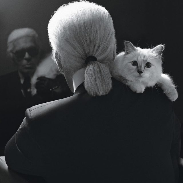 "Rest in Peace #KarlLagerfeld - When I was four, I asked my mother for a valet for my birthday,"" Karl Lagerfeld told W in 1978. ""I wanted my clothes prepared so I could wear anything I wanted at any time of the day. I was a clothes freak."" - As anyone who follows fashion knows, the iconic German designer never outgrew this obsession with his wardrobe. For decades, W has chronicled his costumes, from the silk robes and fluttering-fan ensemble he favored in the Seventies and Eighties to his famed uniform of starched, high-collared shirts, tight jeans and fingerless gloves. Sunglasses have been one constant. ""Sometimes I feel like seeing blue, sometimes pink, sometimes a more beige-y color. It depends,"" he told W in 1986, when asked how he decides which of his many, many pairs of shades to wear each day. ""I buy everything. My collection is going to be a very important document, because who else buys so many?"" - ""I don't turn pages; I tear them out. I make blank pages again,"" he told W in 2003. ""I am an unwritten"