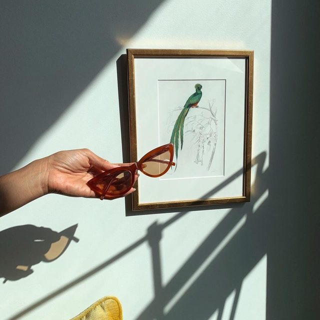 don't get blinded by the Terracotta & Peach frames -link in bio #mymymy