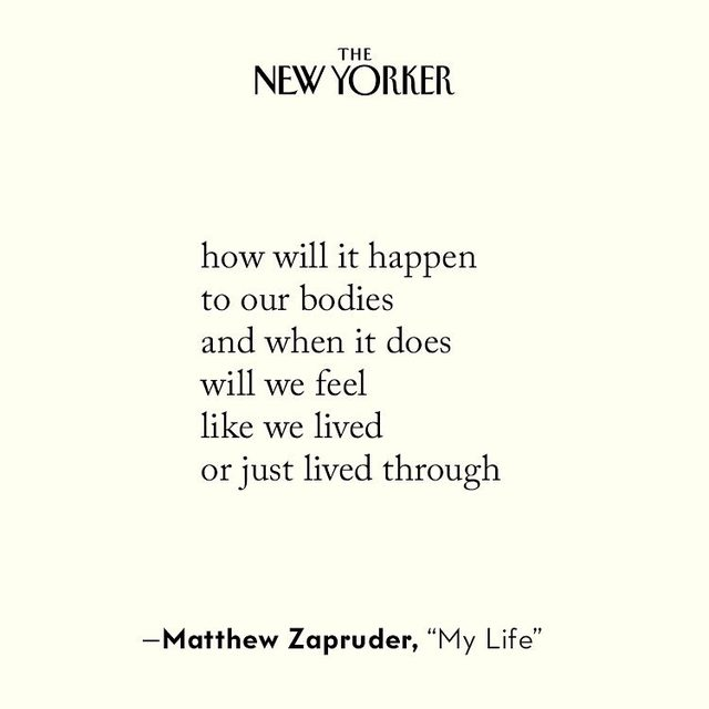 By Matthew Zapruder, in this week's issue of the magazine. Tap the link in our bio to read the full poem.