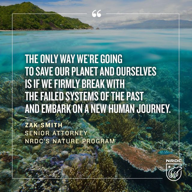 The United Nations released a new report assessing the world's biodiversity and the health of the ecosystem's millions of species, including our own. As you might expect, the news isn't encouraging, but it does present us with a clear path of how to move forward to save our natural world. It won't be easy, but it's time to engage as if our lives depend on it—because they do. Learn more via the link in our profile! - #nature #wildlife #biodiversity #unitednations #ecosystems #sustainability #science