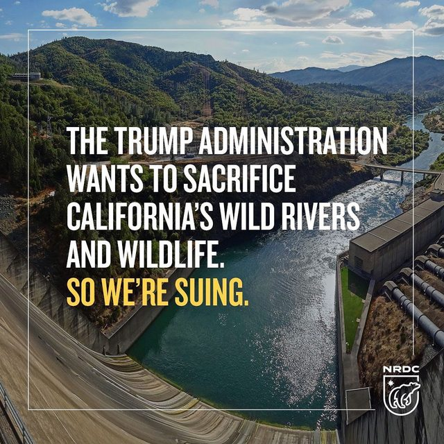 Earlier this week, a coalition of fishing and conservation groups including NRDC filed a lawsuit in California against Westlands Water District for unlawfully aiding efforts by the U.S. Bureau of Reclamation to raise Shasta Dam and degrade the free-flowing and wild trout rich McCloud River. This was an illegal attempt to enrich one district's water supply at the expense of our natural heritage, and we're fighting back. 💪Read more via the link in our bio. - #shastadam #california #McCloudRiver #nodamraise#SacramentoRiver #mountshasta #fish #trout #wildlife