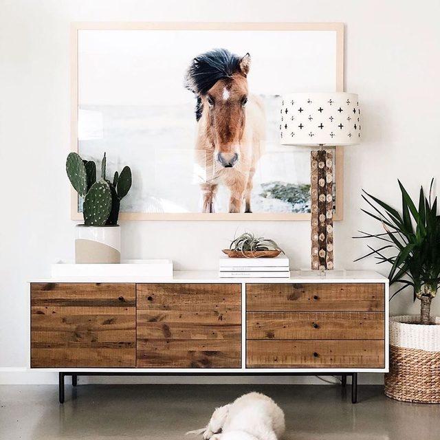 "We think @kimmyintx's pup Zozo has the right idea planned for the long weekend. — ""All is Quiet"" photo art by @jennikupelian. #MintedArt"