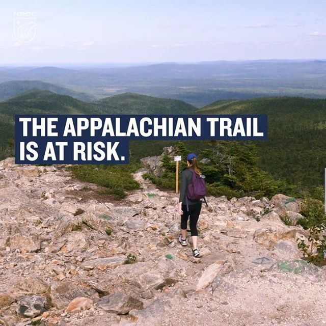 When the Trump administration gave the Atlantic Coast Pipeline permission to cross the Appalachian Trail, a federal court said no. National Scenic Trails like the Appalachian Trail are treasures to be protected and set aside for future generations, not sacrificed for the sake of for-profit, privately owned fossil fuel infrastructure. But the Trump administration won't give up—they're appealing the ruling, putting fossil fuel interests ahead of our environment, as usual. Learn more at the link in our profile! #ACP #NoACP #AppalachianTrail #Apppalachian #Nature #Wild #throughhiking #hiking #nationalparks