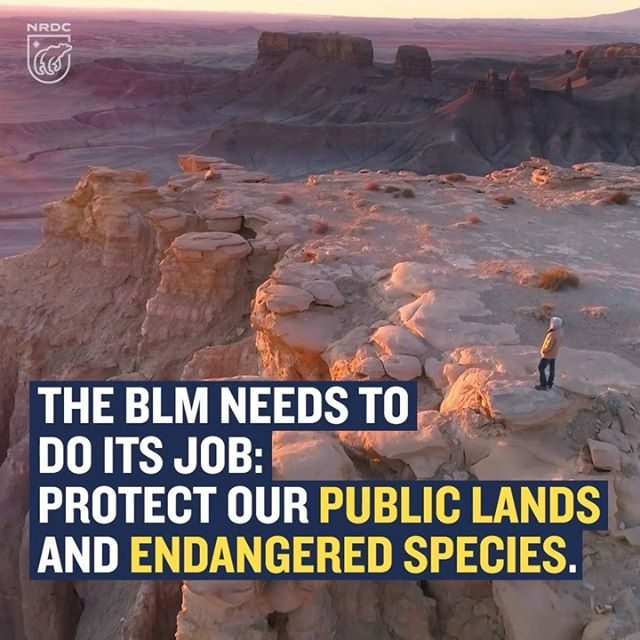 The Trump administration's Bureau of Land Management kicked off the start of the summer season with a recent announcement that off-road vehicles will be allowed near southern Utah's Factory Butte, upending a 13-year ban that protected a cactus species from extinction. Back in 2005, the Southern Utah Wilderness Alliance successfully petitioned the Bush administration to close off 5,300 acres of federal land to protect the Wright fishhook. The decision not only threatens the endangered cacti but also means that one of Utah's iconic landscapes will suffer damage that could last decades. Learn more at the link in our profile! #KeepItPublic #Wild #Nature #PublicLands