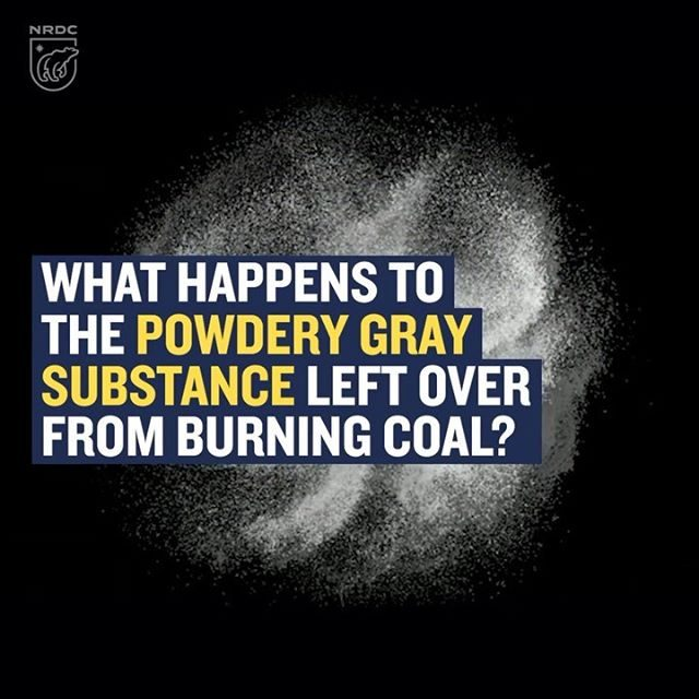 Coal ash is the powdery gray byproduct of burning coal, and the United States produces a staggering 110 million tons of it each year. 😱! Coal producers mix the ash with water and store it in acres-wide, frequently unlined basins in the ground—which often leak. The toxic cocktail, which contains lead, arsenic, mercury, and other harmful metals, can make its way into our water supply. In fact, a recent study found unsafe levels of harmful coal ash pollutants in groundwater at 91 percent of U.S. coal-fired plants that have released monitoring data to the public. It's just another reason coal has no place in our clean energy future. 💯 Learn more by visiting the link in our bio!  #coal #fossilfuels #energy #publichealth #environment #cleanenergy