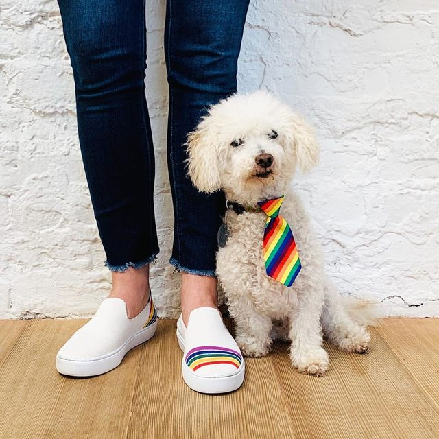 Happy #Pride from our HQ—people and pups alike! We're incredibly proud to wear rainbows year-round, but especially during the month of June as we celebrate our LGBTQ+ community. This year, we donated to @startoutcommunity, a non-profit that connects and educates LGBTQ+ entrepreneurs to empower great leaders and businesses. 🌈