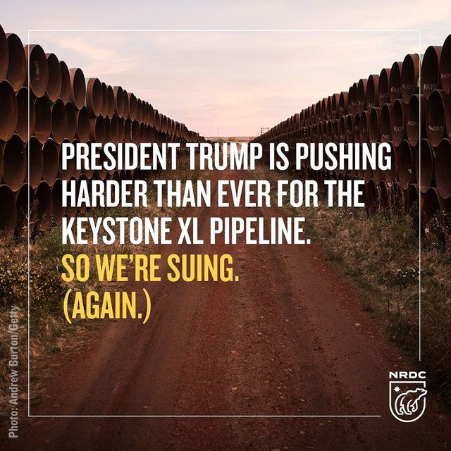 BREAKING: Today we're suing the Trump administration over the Keystone XL pipeline. Again.  In trying desperately to revive the dangerous Keystone XL over the past two and a half years, President Trump and his administration have continually failed to meet their legal duty to evaluate the pipeline's potential environmental impacts. This would be an 830,000-barrel-per-day project that would carry some of the dirtiest crude oil on the planet across America while detonating a carbon bomb in Alberta's tar sands amid our growing climate crisis. Decisionmakers and the public should not and cannot sign off on a project like this without full knowledge of all the risks it carries.  So we're taking the Trump administration to court. Visit the link in our bio to learn more!  #keystonexl #kxl #keystonexlpipeline #saveourenvironment