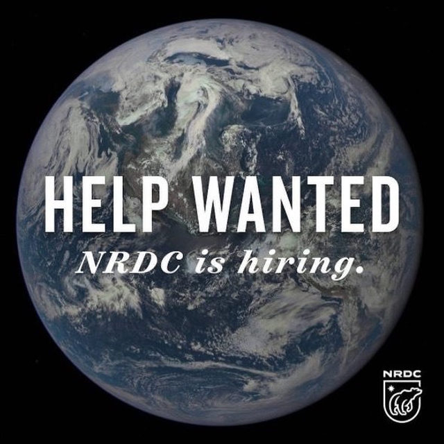 Hey social media folks! 👋We're looking for a Defense Campaign Social Media Editor, who will focus on fighting back against attacks on our environment and public health (you'll also make some pretty sweet gifs 😎). Apply by visiting the link in our bio, or through the NRDC website! - #activism #resist #politics #environment #nrdc #environmentalism #sustainability #government #climatechange #actonclimate #socialmedia #jobs #social #socialmediajobs