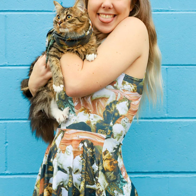 Hey kitty girl, it's your world 😻 Get this crazy cat lady's dream dress (+ bonus bandana for you or your fur child) this weekend only! #blackmilkclothing #blackmilk #bmmywifesloversreversibleskaterdress
