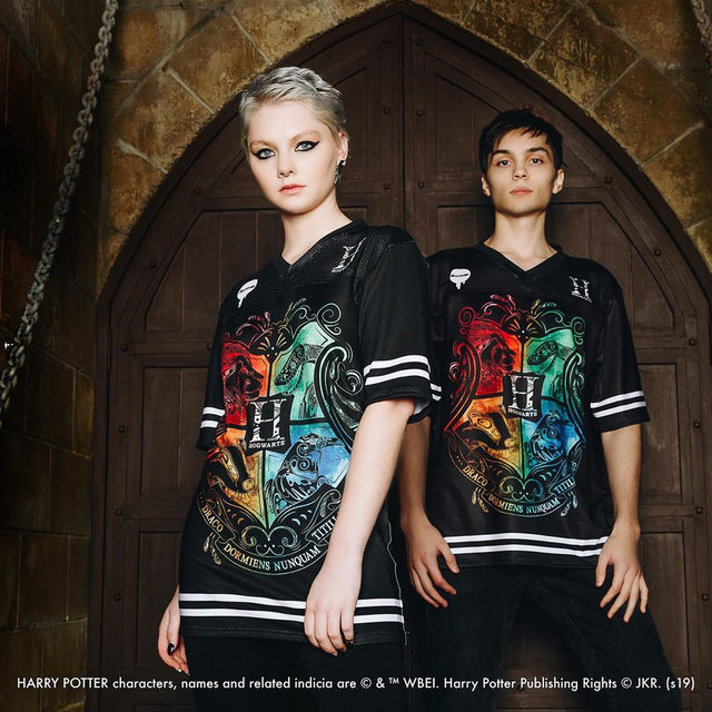 Draco dormiens nunquam titillandus! Show your Harry Potter Pride. School's Out! drops tomorrow - 7am AEST Tues August 20. #HarryPotter #blackmilkclothing #blackmilk #bmfourhousestouchdown
