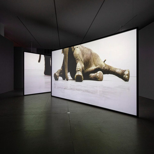 """The solo presentation, """"Douglas Gordon: In My Shadow,"""" is now on view at the ARoS Aarhus Art Museum in Denmark! - """"In My Shadow"""" is one of the most extensive demonstrations of Douglas Gordon's work in Europe to date and shows a wide selection of the artist's most important works. Learn more via the link in our bio. __________ #DouglasGordon #Gagosian @arosartmuseum Photos: Anders Sune Berg"""