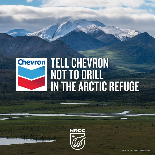 The Trump administration will soon begin leasing land in the Arctic National Wildlife Refuge for oil and gas development — and oil megacorp Chevron is chomping at the bit to be among the first to get in. 😡 Click the link in our profile to send a message directly to Chevron's CEO calling on him to pledge not to drill in one of our last wild spaces! 🙅‍♀️ - #alaska #arctic #arcticnationalwildliferefuge #anwr #chevron #nature