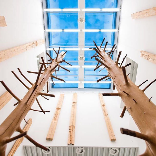 """Visit """"Giuseppe Penone"""" currently on view at the Stiftung Saarländischer Kulturbesitz in Saarbrücken, Germany.  Penone's aesthetics are based on a dialogue with nature and its forces and revolve around the question of the limits of one's own body and perception. Included in this eponymous exhibition is the multipart expansive sculpture """"Coteccia"""" (1983), which is presented in Germany for the first time. Learn more via the link in our bio! ___________ #GiuseppePenone #Gagosian @modernegalerie Repost: @modernegalerie, Artwork © Giuseppe Penone/2019 Artists Rights Society (ARS), New York/ADAGP, Paris"""