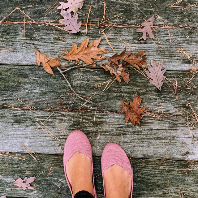 Pro tip: Match your shoes to the leaves for the ultimate fall look 🍂 @jaclynraymond #rothysinthewild