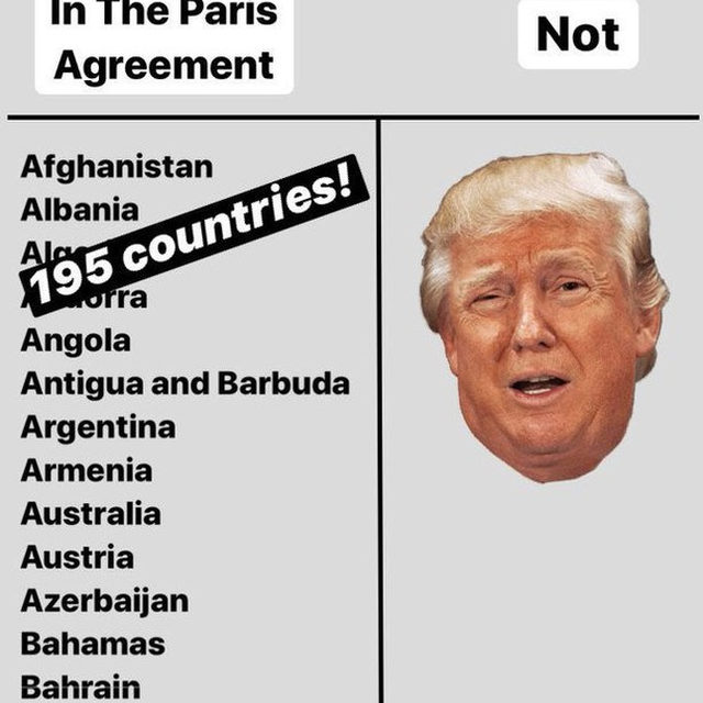 BREAKING: Today, Trump announced that he will begin the formal withdrawal of the US from the Paris Agreement. We've synthesized that information into this helpful chart for you 🙄. This is yet another attempt to derail the world's unity to fight climate change, but luckily, there are a few silver linings here (including when the withdrawl actually goes into effect). Check them out via the link in our bio. - #trump #climatechange #actonclimate #climateaction #parisagreement