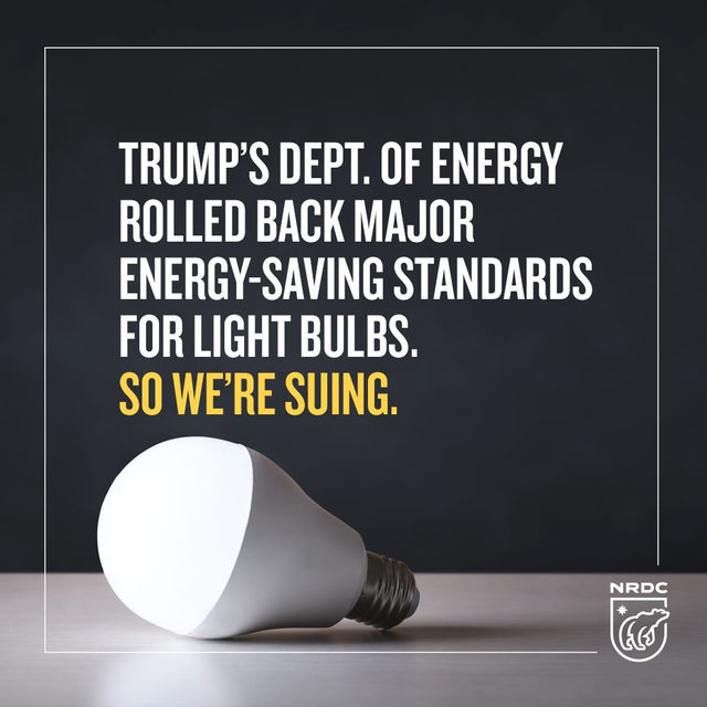 BREAKING: Today, NRDC and our partner groups filed a lawsuit challenging the U.S. Department of Energy's rollback of energy-saving standards for light bulbs 💡 Trump's DOE rolled back energy-saving standards for the billions of light bulbs that fill about half of the conventional sockets in America, a reversal that will significantly increase consumer energy bills 💰and climate pollution 🌎. That's unacceptable—so we're suing. Visit the link in our bio to learn more. #lightbulbs #energy #energyefficiency #efficiency #climate #climatechange #pollution #energybills #doe #departmentofenergy #environment