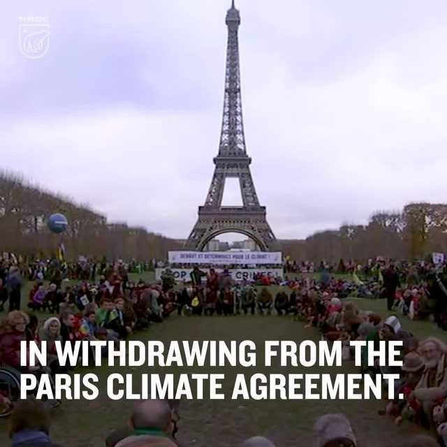 The Trump administration made its intention to withdraw the United States from the #ParisAgreement official this week. 😡 Although the world has rejected President Trump's invitation to follow his example—not a single other country has announced its withdrawal—the world needs America on board to address the challenge. 🌎 And whether Trump likes it or not, we're still taking #climateaction. Click the link in our bio to join our fight! - #climatechange #actonclimate #werestillin