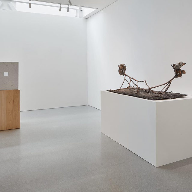 """#PenoneSF: An exhibition of sculptures and drawings by Giuseppe Penone is on view at Gagosian, San Francisco, through November 30! - """"Foglie di bronzo / Leaves of Bronze"""" features a selection of works in bronze, stone, and marble illustrating the Penone's ability to seamlessly transpose human-made and naturally occurring patterns. Freestanding sculptures such as the cast bronze foliage of """"Pensieri di foglie (Thoughts of Leaves)"""" (2014–17) compare traces made by the artist's hand to the weathering and degenerative marks made on plants and minerals as they are left to the elements. Find out more via the link in our bio.  _________ #GiuseppePenone #Gagosian Installation views, """"Giuseppe Penone: Foglie di bronzo / Leaves of Bronze,"""" Gagosian, San Francisco, September 12–November 30, 2019. Artwork © 2019 Giuseppe Penone/Artists Rights Society (ARS), New York/ADAGP, Paris. Photos: Johnna Arnold"""