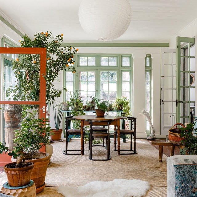 """Manifesting a """"plant room"""" for 2020 after visiting this one in @mollygfindlay's home 🙌🌿🙌 See how she and her husband Everard revitalized the Grey Gardens-ish house for their young family 👉 link in bio 📸 by @maxb.photo"""