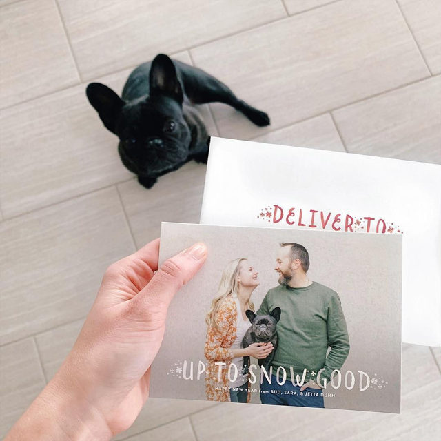 """Always say yes to: including your furry friends in your New Year's photo cards like @saradoesseo. 🐱🐶 #MintedHoliday — """"Snow Good"""" holiday photo card @banterandcharm"""