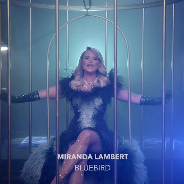 """""""If the whole wide world stops singing. And all the stars go dark. I'll keep a light on in my soul. Keep a bluebird in my heart."""" 💙Watch as @mirandalambert sings and brings us peace with her new video """"Bluebird"""" 🐦 ⠀⠀⠀⠀⠀⠀⠀⠀⠀ ▶️[Link in bio] #MirandaLambert #BlueBird"""