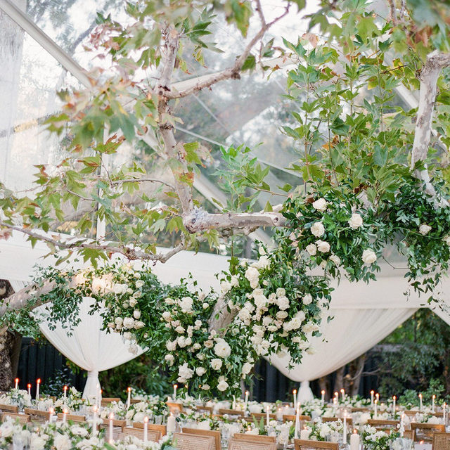 Can we all take a moment to appreciate this AMAZING floral covered branch inside this tented wedding from @lyndenlane and @larkfarnumdesign ?? 🤩🤩🤩 Just breathtaking - love how our #velvetlinen in Fern looks underneath! 📷 @twahphotography featured on @martha_weddings  #latavolalinen #transformyourtable #greenery #velvet #dreamwedding #tentedwedding #floralchandelier #hangingflorals #californiawedding #pasadena #greenvelvet #velvettablecloth #soloverly