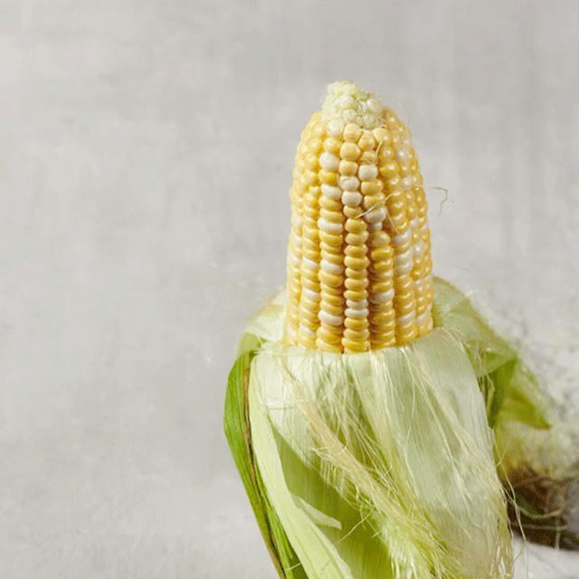 Aw shucks, your summer corn days are limited. The good news? All the fall things are coming.
