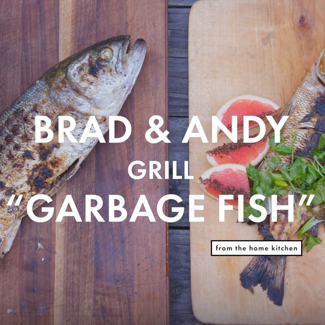 """Garbage fish"" is a term applied to bycatch, or fish unintentionally caught while trying to catch other fish. Bycatch can be eaten and prepared the same way as more popular fish, and are typically cheaper. At the link in our bio watch @brad_leone and @andybaraghani prepare and cook bluefish and porgy, two fish often thought of as bycatch."