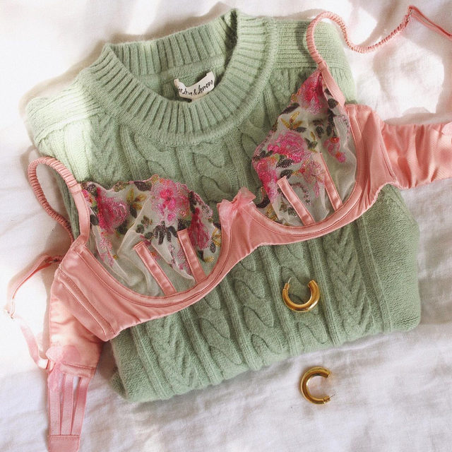 Meanwhile, here's a pretty distraction // The Blushing Rose Underwire Bra and Sydney Sweater