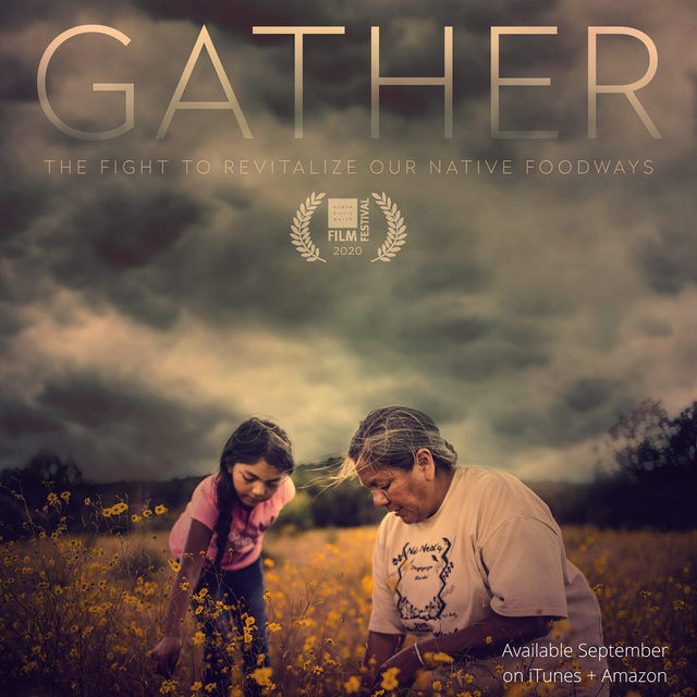 Since the first colonizers came to Turtle Island, the United States government and military has enacted policies working to separate Indigenous peoples from traditional lands and as a result severing thousands of years of cultural and spiritual relationships with that land.   Gather is an intimate portrait of the growing movement amongst Indigenous peoples to reclaim their spiritual, political and cultural identities through food sovereignty, while battling the trauma of centuries of genocide.   Native food rights are human rights. Join us in supporting Gather and learn more about the film and movement through the link in our bio. 🌿  #SowIndigenous #GatherFilm #FoodSovereignty #LandBack
