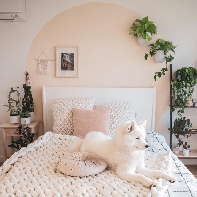 Between the blush color palette and the cozy textures, we can't get enough of this dreamy bedroom design. And the doggo! (📷 submitted by @plantyofmish)