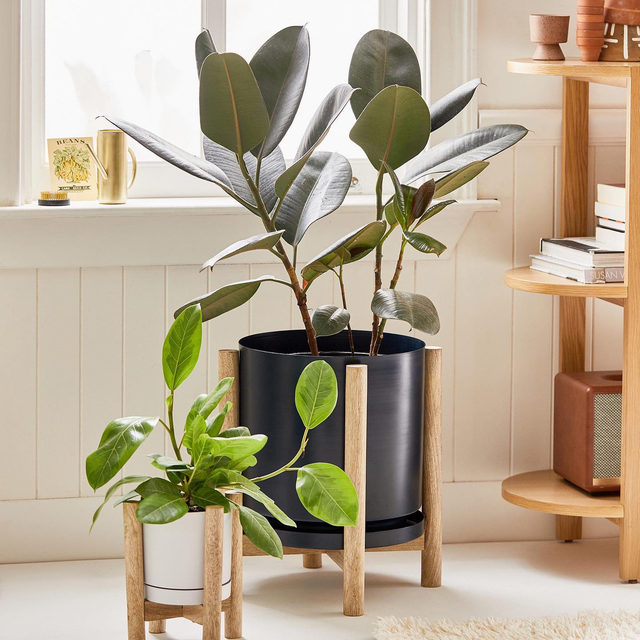 """With spring just around the corner, now is a good time to rehome your houseplants  swipe and tap to shop new planters on the site. #UOHome  Carley Footed Planter  Bocca 8"""" Planter And Basket  Text 4"""" Planter  Carley Tiered Plant Stand"""