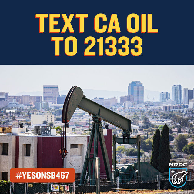 🗣Tell California Senators to #EndDangerousDrilling!   California leaders have the power and the responsibility to protect the health and safety of communities across the state from dangerous oil & gas drilling.   We stand with @CRPE_EJ, @VoicesCA, @SierraClubKern, and the millions of Californians living near toxic oil & gas drilling who support #YesOnSB467, you can too!   ☎️ Text 𝘾𝘼 𝙊𝙞𝙡  to 21333 to ask that @Senatorhenry @SenBrianJones @BenAllenCA @ShannonGroveCA @SenBenHueso @MoniqueLimonCA VOTE #YesOnSB467!!  By texting 21333, you consent to recurring messages from NRDC; msg & data rates may apply; text STOP to quit; HELP for info.