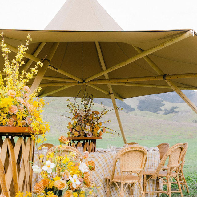 DREAM WEDDING 💛✨🌼🌾 If we had a wedding do-over this would be the jam right here 🤩 Seriously in love with this magical set up with our #voyagerlinen in Taffy by @wild_heart_events and @layeredvintage 📷 @alexaphoto   #latavolalinen #transformyourtable #bbjlt #bettertogetherbbjlt #dreamwedding #yellow #yellowwedding #sanluisobispo #santabarbara #santabarbarawedding #tentwedding #outdoorwedding #yellowflowers #alfrescodining #californiawedding #californiabride #fineartwedding
