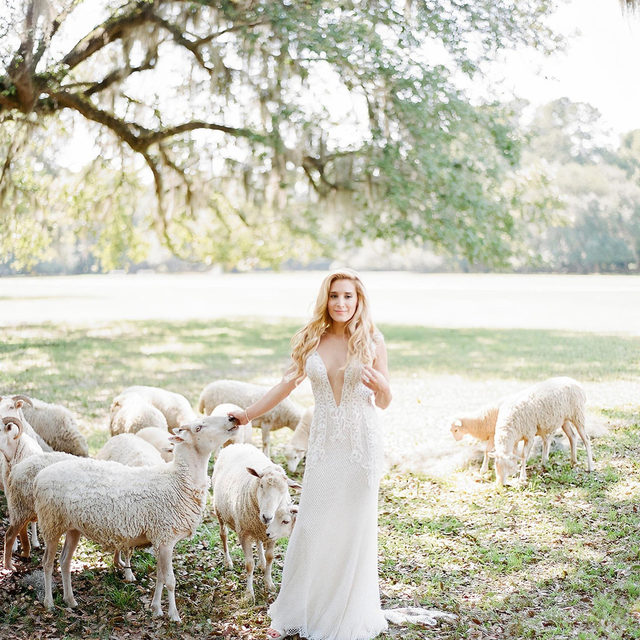 #HappyEarthDay 🌎・Go green 💚 and make our Earth a beautiful place to live, so we can all enjoy outside #weddings like Brittney's! 😉・Our #BridalReflectionsBride @brittneyhlevine celebrated her big day in Charleston, South Carolina! Her wedding was actually postponed - but not from COVID! You can read about her postponed wedding in the article from @people by clicking the link in our bio! 👰 Spoiler alert: she says it was well worth the wait ❤️ ⠀⠀⠀⠀⠀⠀⠀⠀⠀ ・・・ ⠀⠀⠀⠀⠀⠀⠀⠀⠀ 👰 #RealBride @brittneyhlevine 👗  #Galialahav from Bridal Reflections #GLBride 💎 @boutiquedevoile headpiece 📸 @clayaustin 📔 @pureluxebride 💐 @wearepetaloso 💄 @ayinde.mua 💇 @gisellemacri  🏰 @middletonplaceweddings